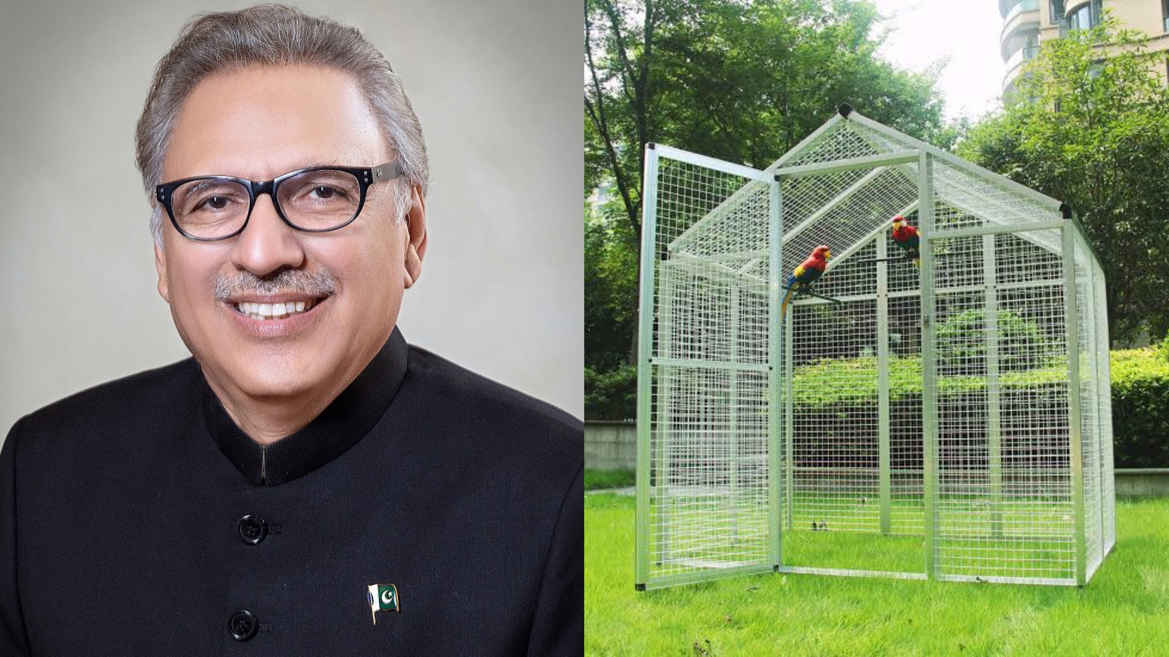 CDA tenders for parrot cages, pots at Presidency face backlash