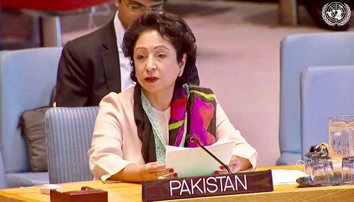 Maleeha Lodhi completed her tenure, was not fired: FO