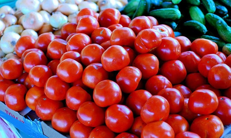 Government decides to import tomatoes from Iran for one month
