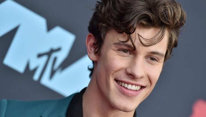 Shawn Mendes makes a donation for coronavirus relief