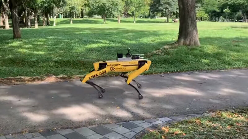 Dog-like robot ensures social distancing in Singapore