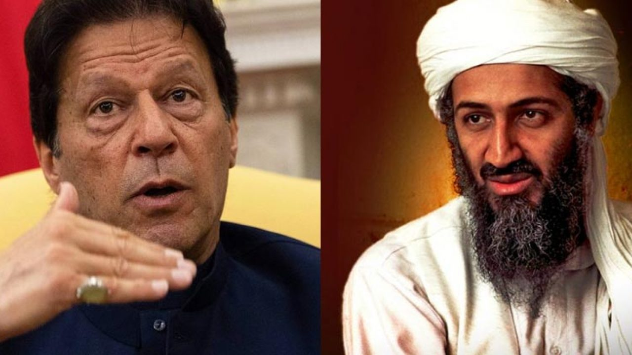 PM Imran Khan did not call Osama bin Laden a martyr, clarifies special assistant