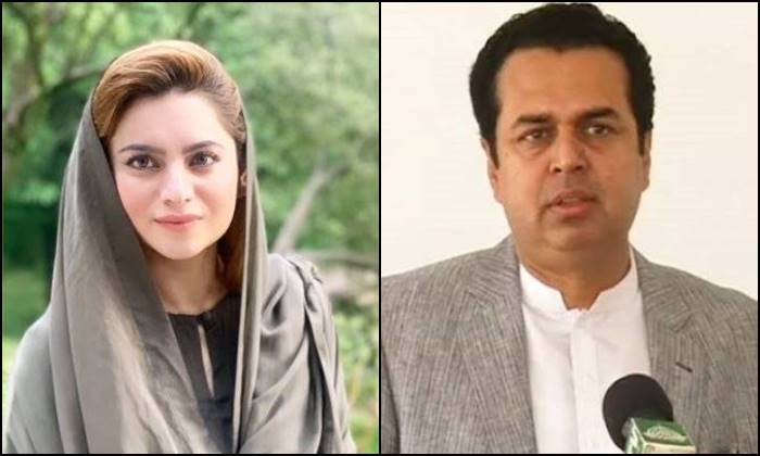 PML-N's Talal Chaudhry gets beaten by party member's brothers over alleged harassment