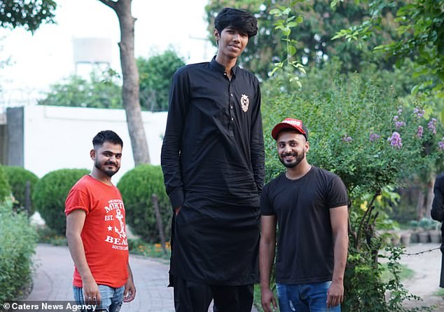 Bullied at school for his height, 7ft 6ins tall Pakistani training to become world's tallest cricketer