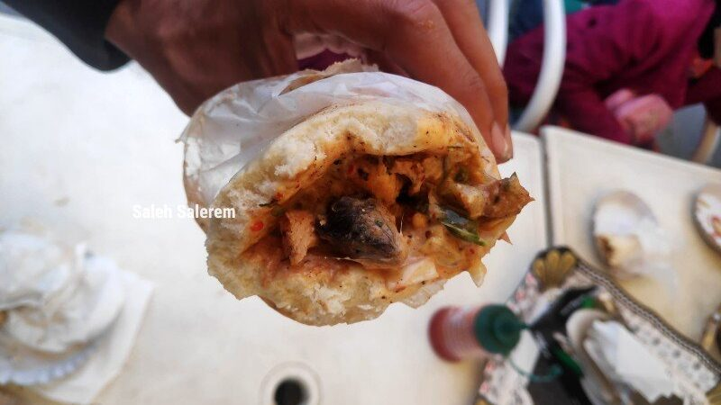 Café in Lahore sealed after 'dead rat' shawarma video goes viral