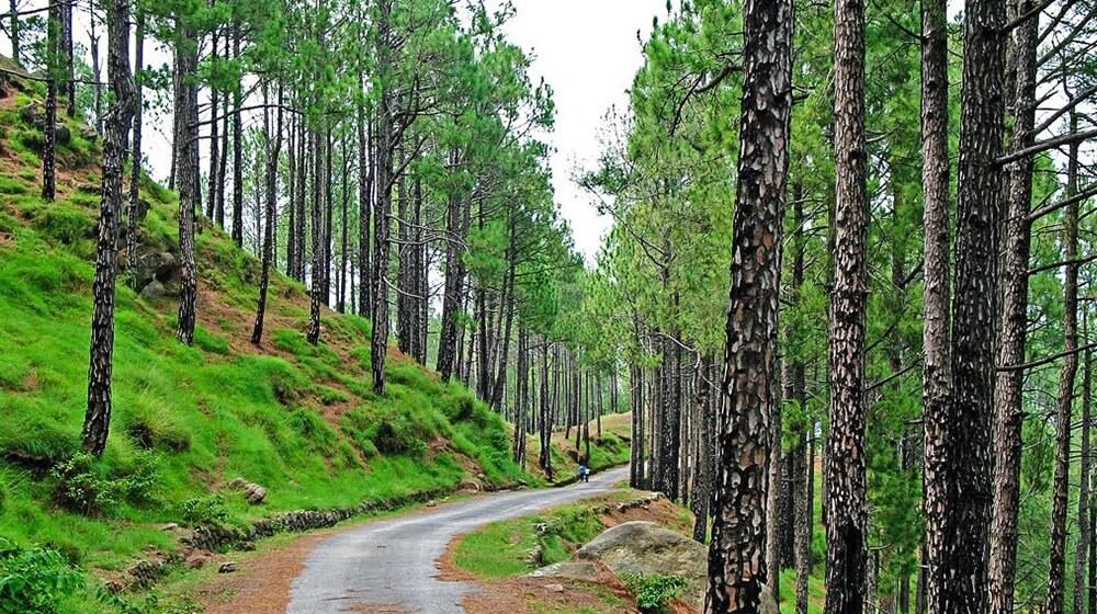 Govt is planning to promote Kotli Sattian as a tourist destination