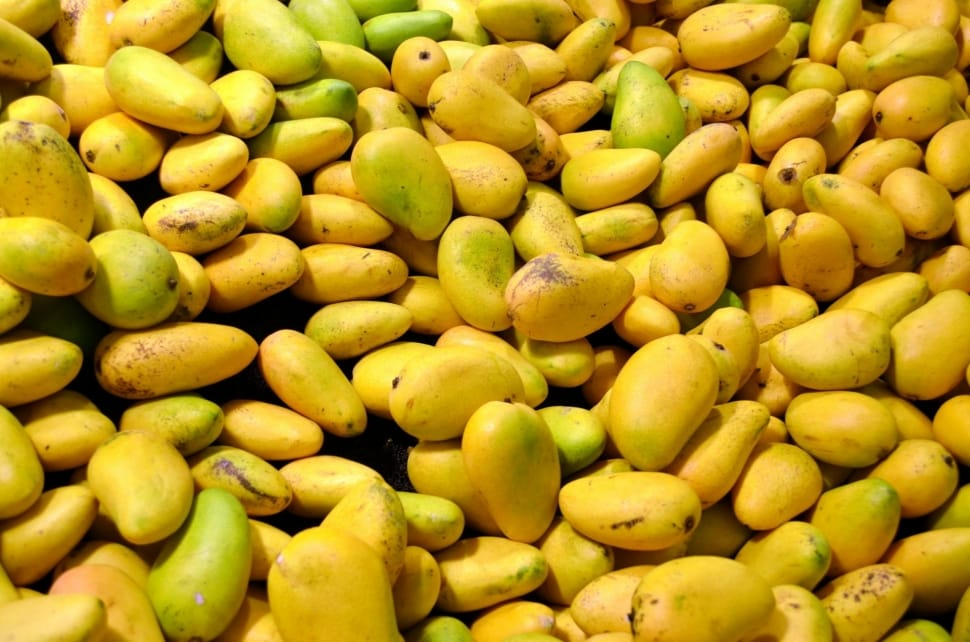 After Australia, now Pakistan gets approval to export mangoes to Japan