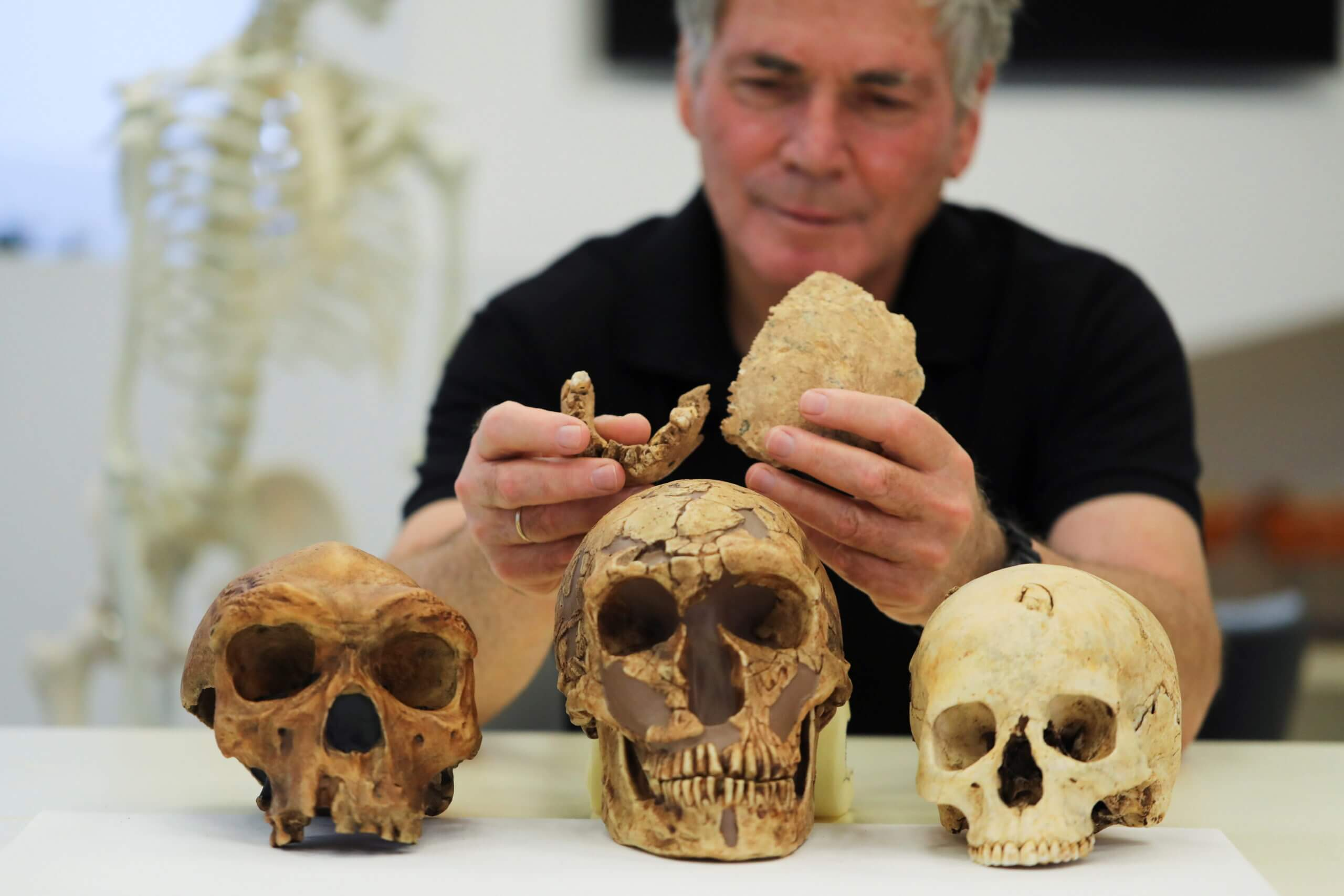 Research team discovers Bones of new type of early human in Israel
