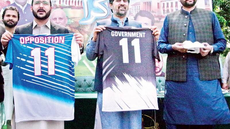 Govt and PPP to have friendly cricket match